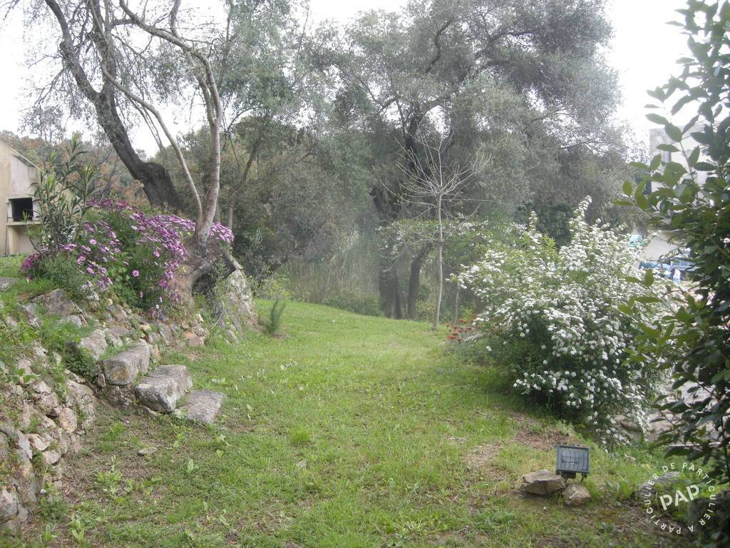 immobilier  Ajaccio