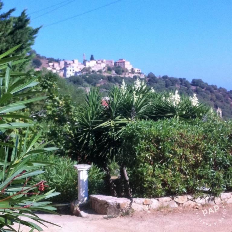 immobilier  Santa-Reparata-Di-Balagna