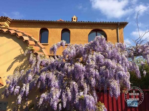 Saint- Raphael - dès 550 euros par semaine - 6 personnes