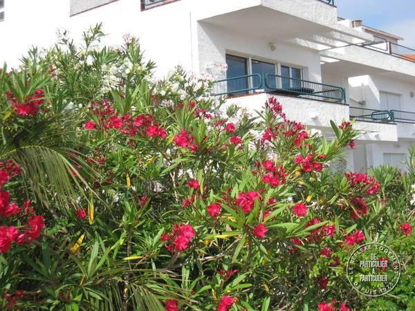 Appartement Llançà Costa Brava