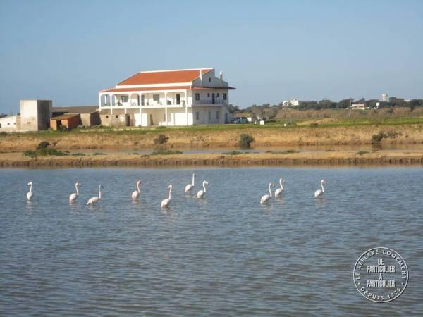 Immobilier Algarve/aldeia Marim