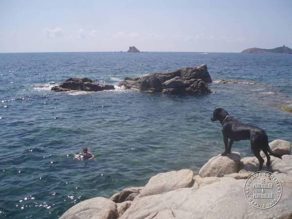 Sainte Lucie De Porto-vecchio - dès 1.000euros par semaine - 5personnes