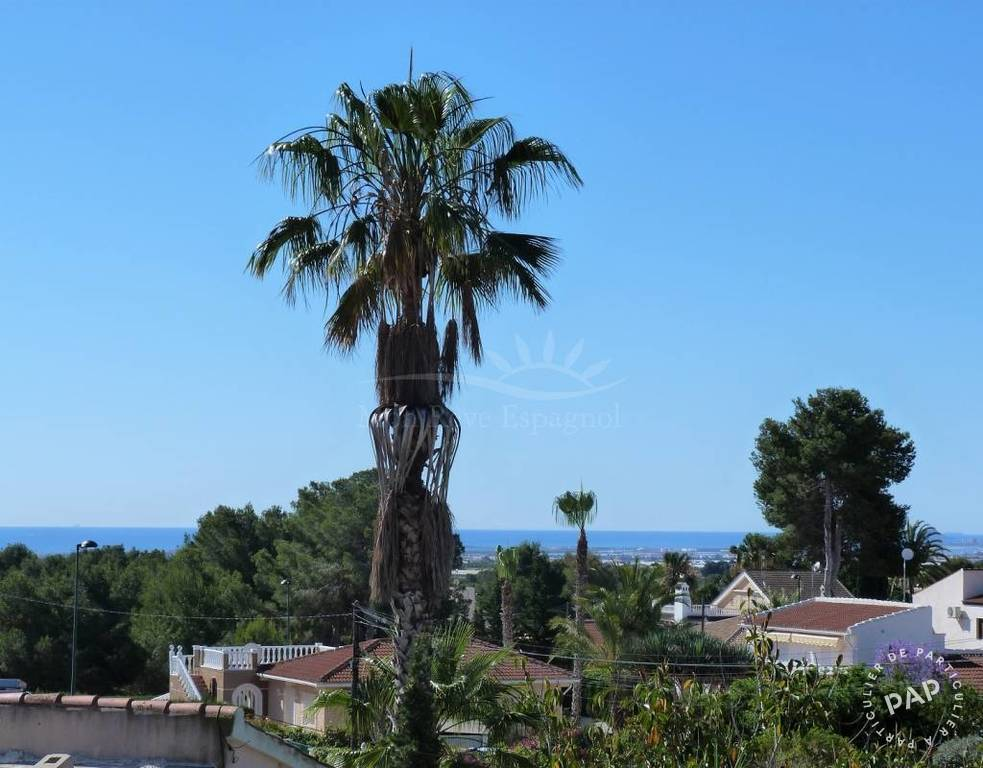 Immobilier Alicante / Alacant