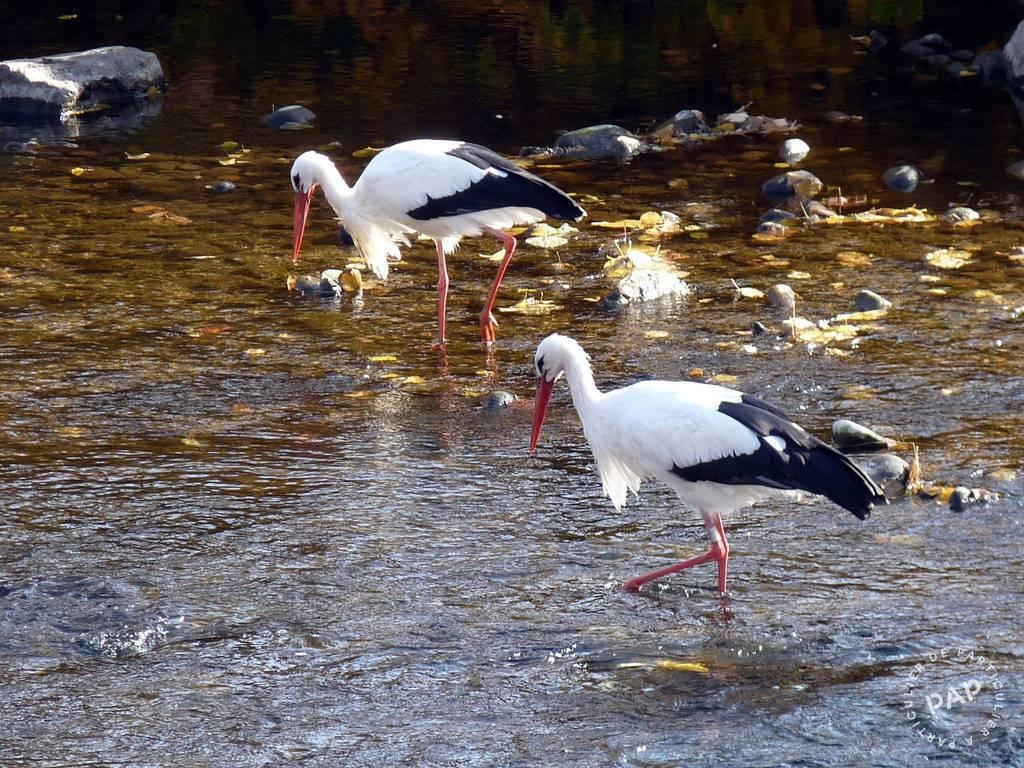Immobilier Xonrupt-Longemer (88400)