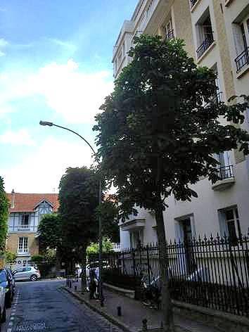 Location appartement 2pi�ces 36m� Saint-Maur-Des-Fosses (94) - 770€