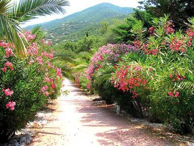 Bastide Proche De Collioure