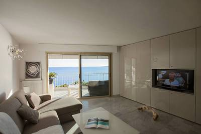 Cannes - Palm Beach