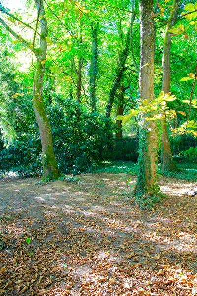 Domaine Proche De Fontainebleau