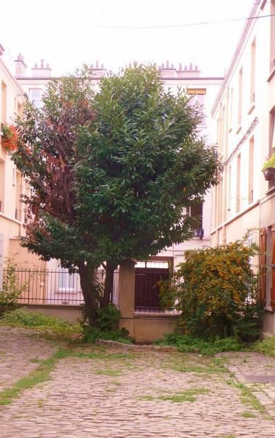 Location appartement 2pi�ces 34m� Aubervilliers (93300) - 780€