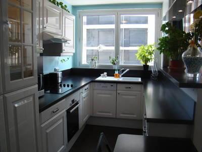 Location meubl�e appartement 2pi�ces 59m� Paris 15E - 2.060€