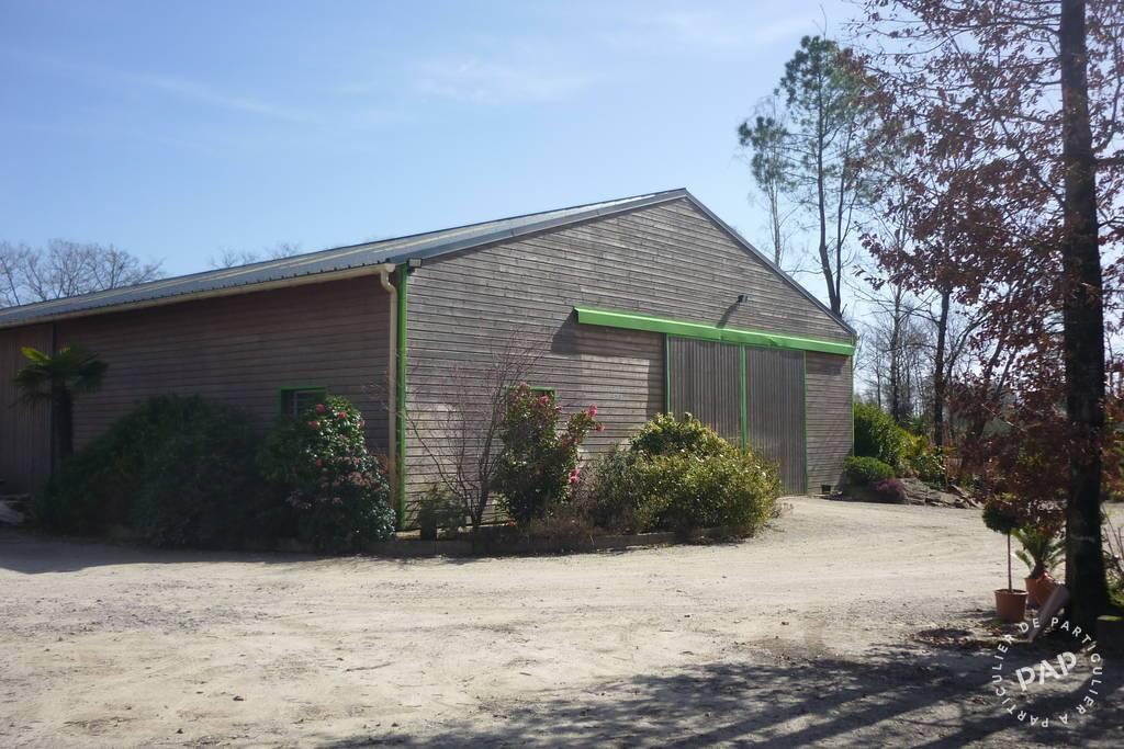 Vente et location Local d'activité Noyal-Muzillac (56190)