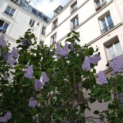 Location meubl�e chambre 15m� Paris 18E - 650€
