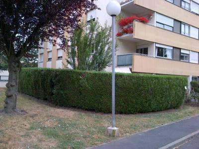 Location appartement 2pièces 50m² Domont (95330) - 880€