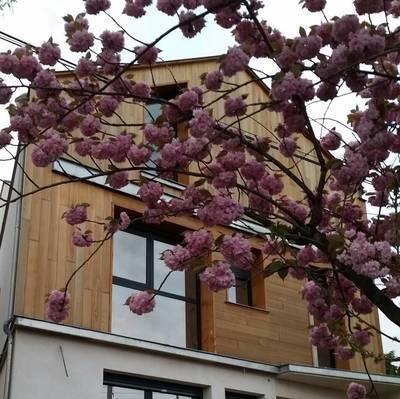 Location appartement 2pi�ces 50m� Bry-Sur-Marne (94360) - 1.265€