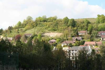 Vente terrain 4.033m² Joigny (89300) Dontreix