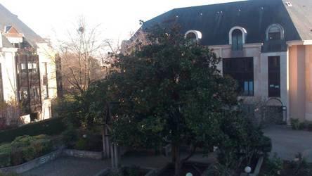Location appartement 4pièces 100m² Versailles (78000) - 1.800€