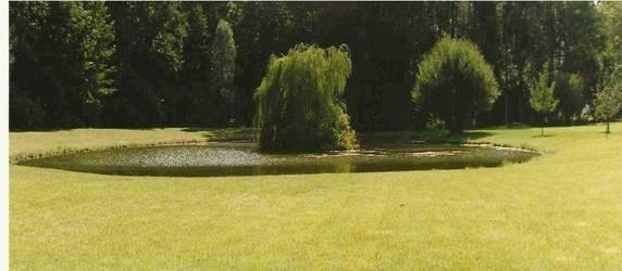 Location meublée maison 144m² Rambouillet (78120) - 1.380€