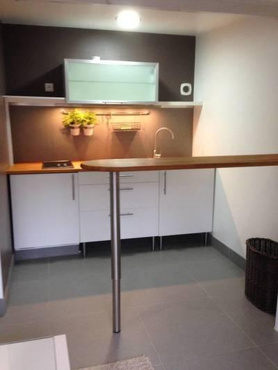 Location studio 19m² Villeneuve-D'ascq (59) - 520€