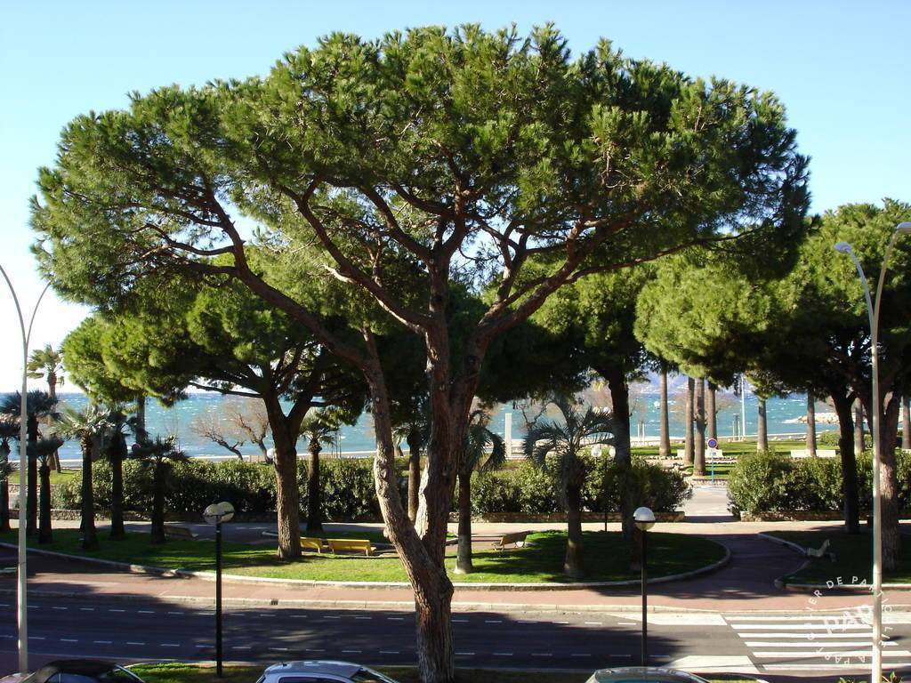 Vente Appartement Cannes (06) 84 m² 1.000.000 €