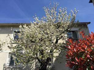 Vente maison 280m² Malakoff (92240) - 1.119.000€