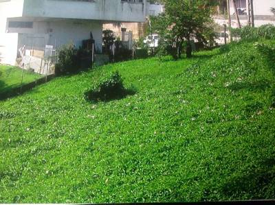 Vente terrain 924 m² Fort-De-France (Martinique) - 190.000 €