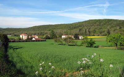 Vente terrain 2.569m² Saint-Gery (46330) - 25.000€