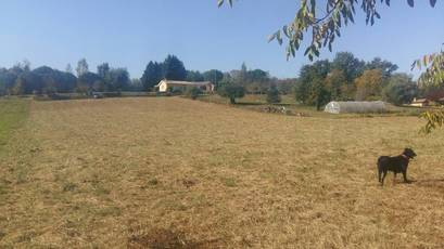 Vente terrain 4.032m² Proche La Réole / Sud Bordeaux - 42.000€