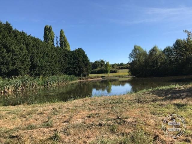 Immobilier Nogent-Sur-Vernisson (45290) 550.000€ 250m²