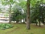 Location appartement 2pièces 60m² Evry (91000) - 790€