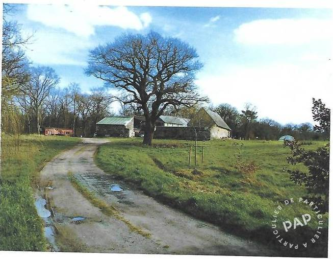 Vente Maison Chenehutte-Treves-Cunault (49350)