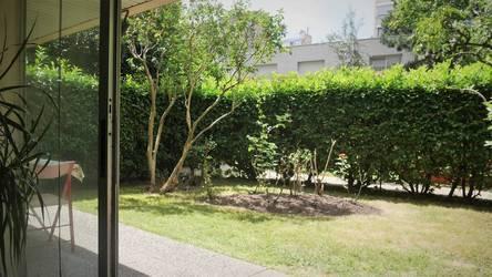 Jardin Privatif - Terrasse