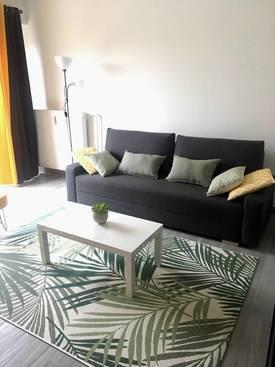 Location meublée studio 28m² Wissembourg (67160) - 510€