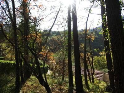 Tourrettes-Sur-Loup - Terrain Constructible