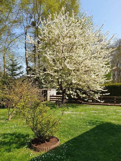 Montalet-Le-Bois (78440)