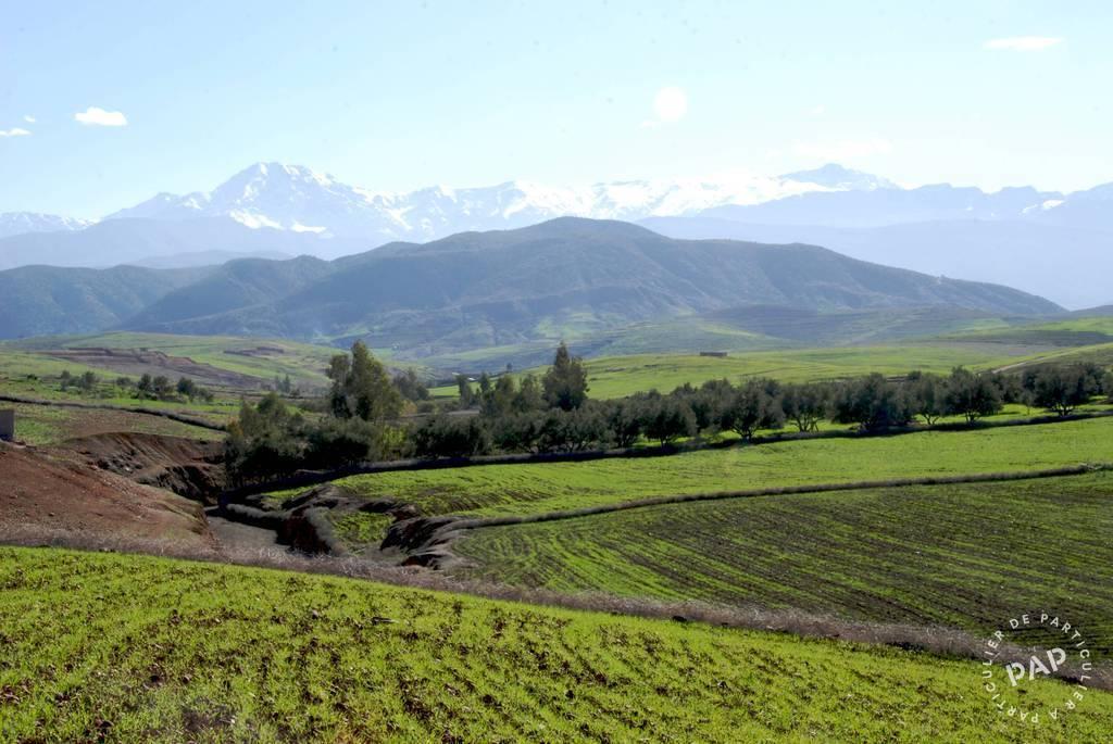 Vente Terrain Maroc  50.000€
