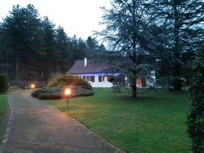 Bouzy-La-Forêt (45460)