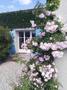 Vente maison 185m² Arvert (17530) - 380.000€