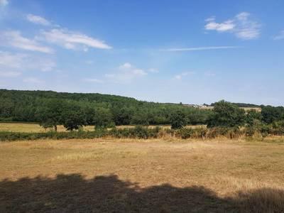 Saint-Léger-Des-Vignes (58300)