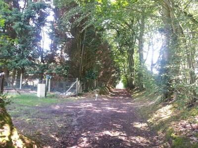 Gonneville-Sur-Mer (14510)