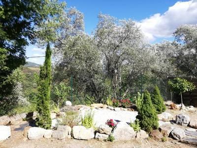 Roquebrun (34460), 14 Km De St-Chinian