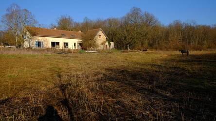 Vente maison 220m² Saint-Agnan (89340) - 398.000€