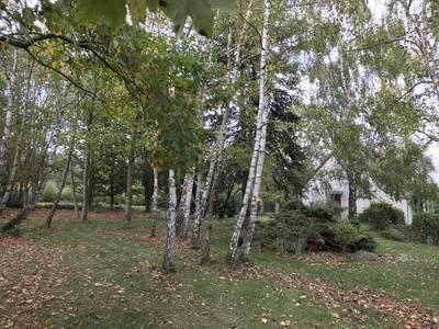 Condé-Sur-Vesgre (78113)