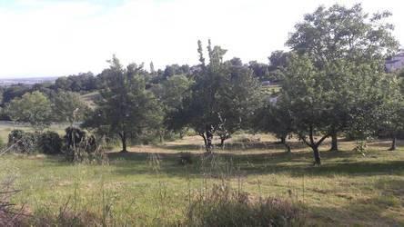 Castelnau-D'estrétefonds (31620)