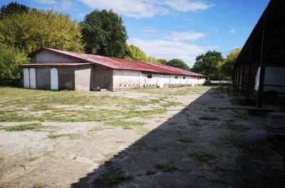 Saint-Yzans-De-Médoc (33340)