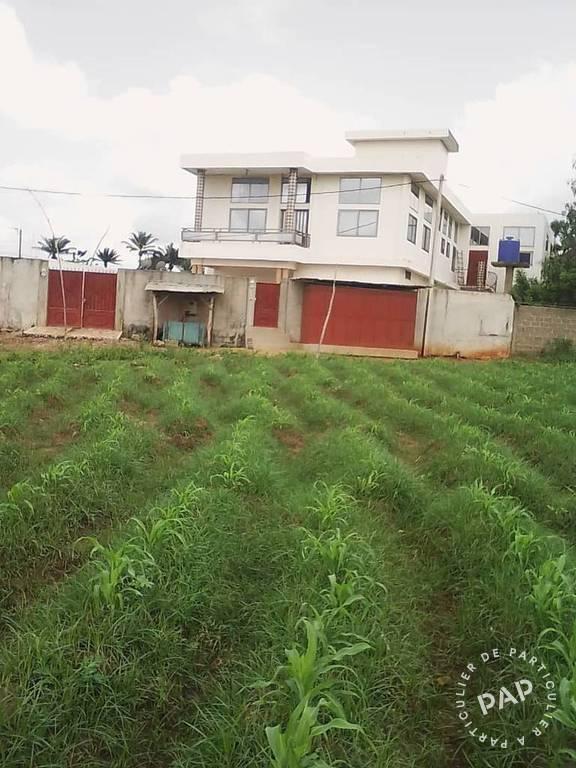Vente Immeuble Vente Immeuble Au Benin  550.000€