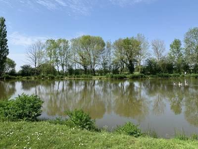 Renovée - Avec  Prairie Et Étang - Saint-Fulgent (85250)