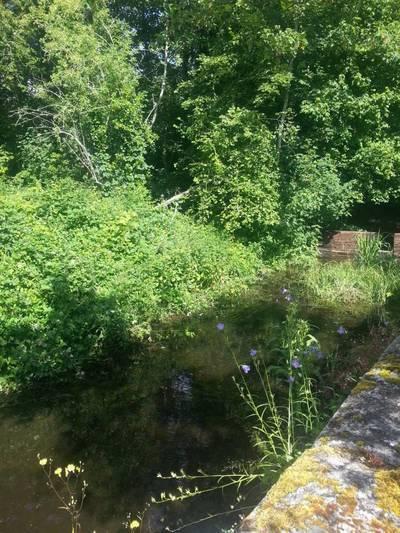 Rochefort-En-Yvelines (78730)