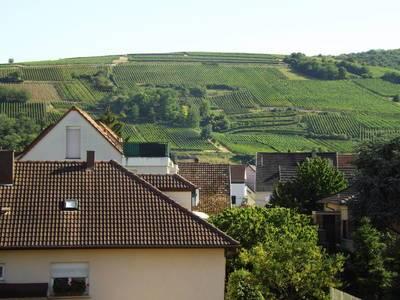 Wintzenheim (68124)