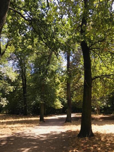 Fontenay-Sous-Bois Limite Vincenne