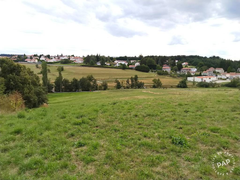 Vente Terrain Saint-Just-Malmont (43240)